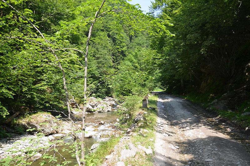 Traseu turistic pe langa Raul Gilort
